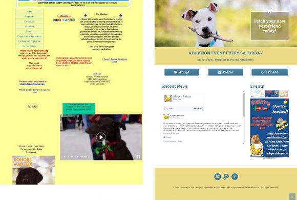 4paws-redesign